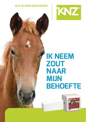 brochure paard