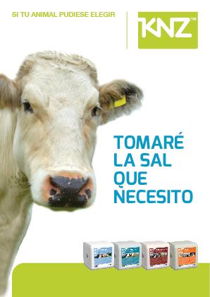 brochure vleesvee