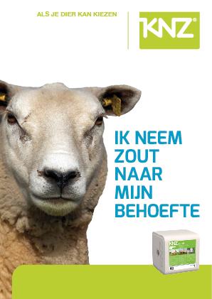 brochure schaap